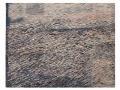 Welle,  Holzschnitt,  70cm  x 90 cm , 2020